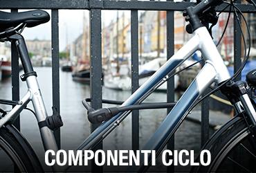 componenti-ciclo
