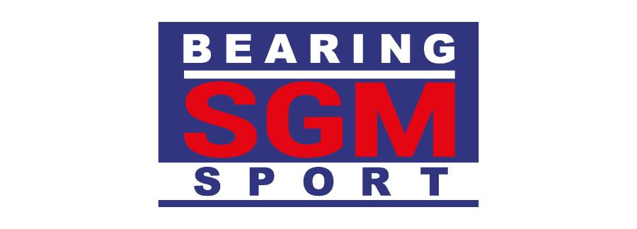 SGM BEARINGS